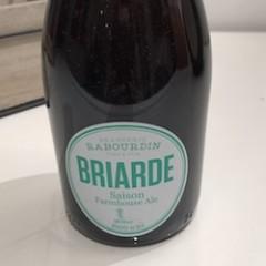 BIÈRE BRIARDE FARMHOUSE ALE 33CL