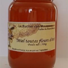 MIEL TOUTES FLEURS (500 gr)